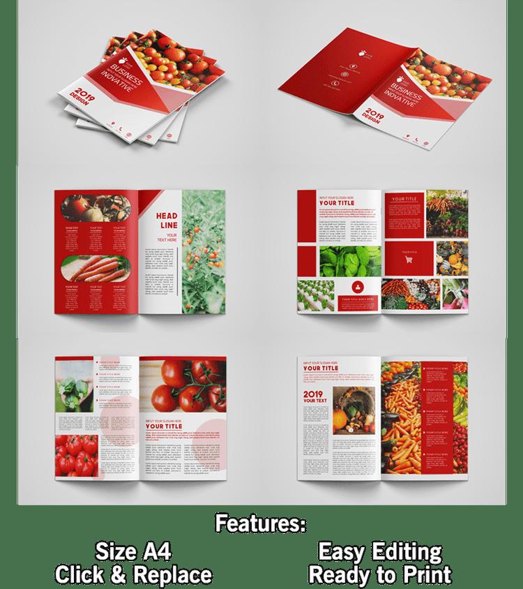 Redness Brochure Designs